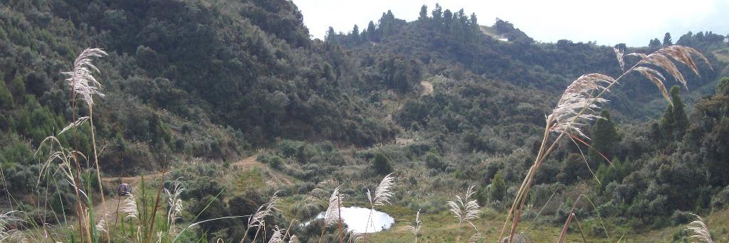 Cerro Cabugana